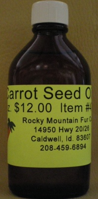 Carrot Oil 4oz. #473